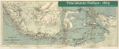 Malay-wallace1869