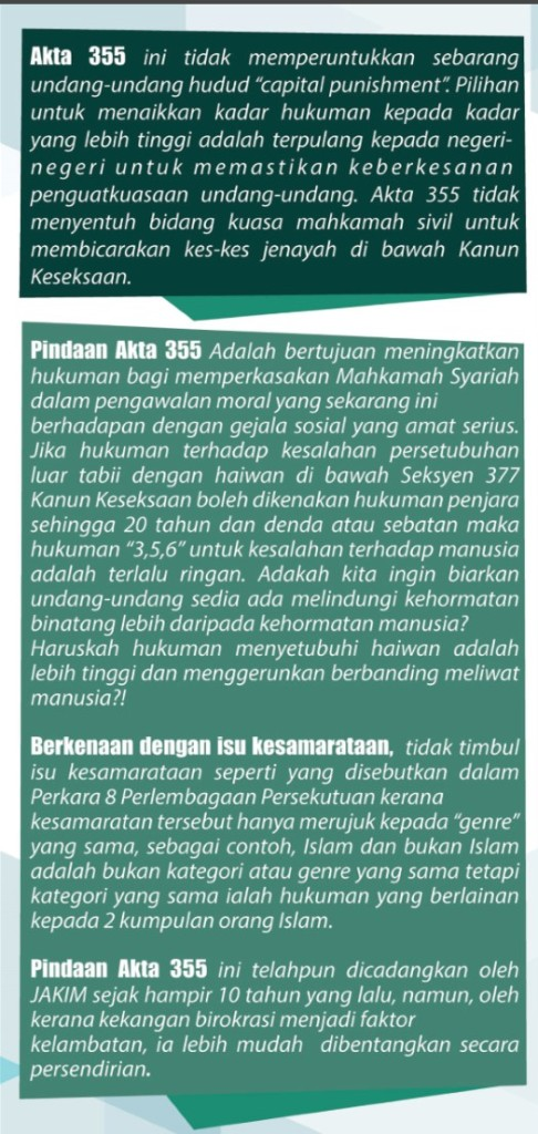 PindaanA355-flyer-5