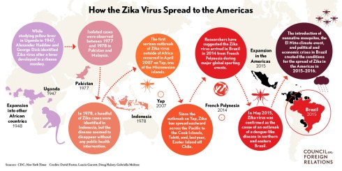 Zika_virus_final2-01